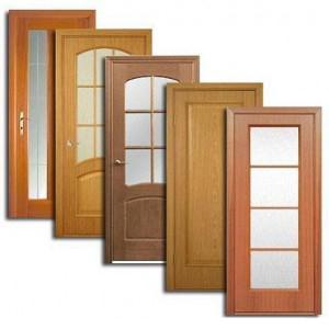 Двери, дверные блоки Касторного