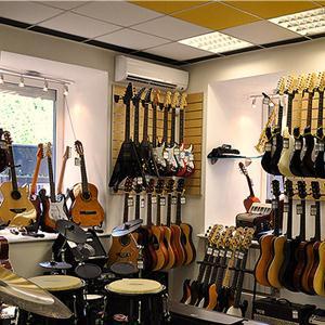 Музыкальные магазины Касторного