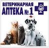 Ветеринарные аптеки в Касторном