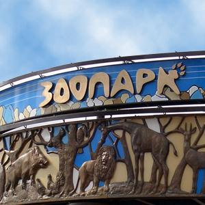 Зоопарки Касторного